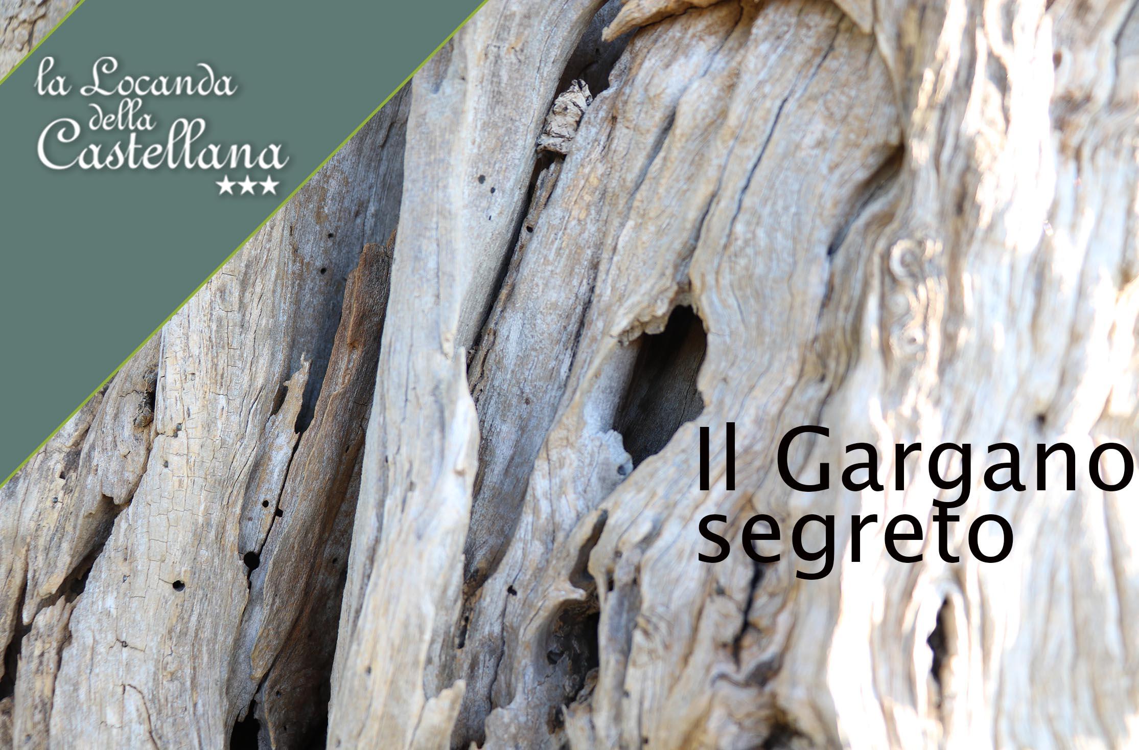 Parco Nazionale del Gargano. Puglia.