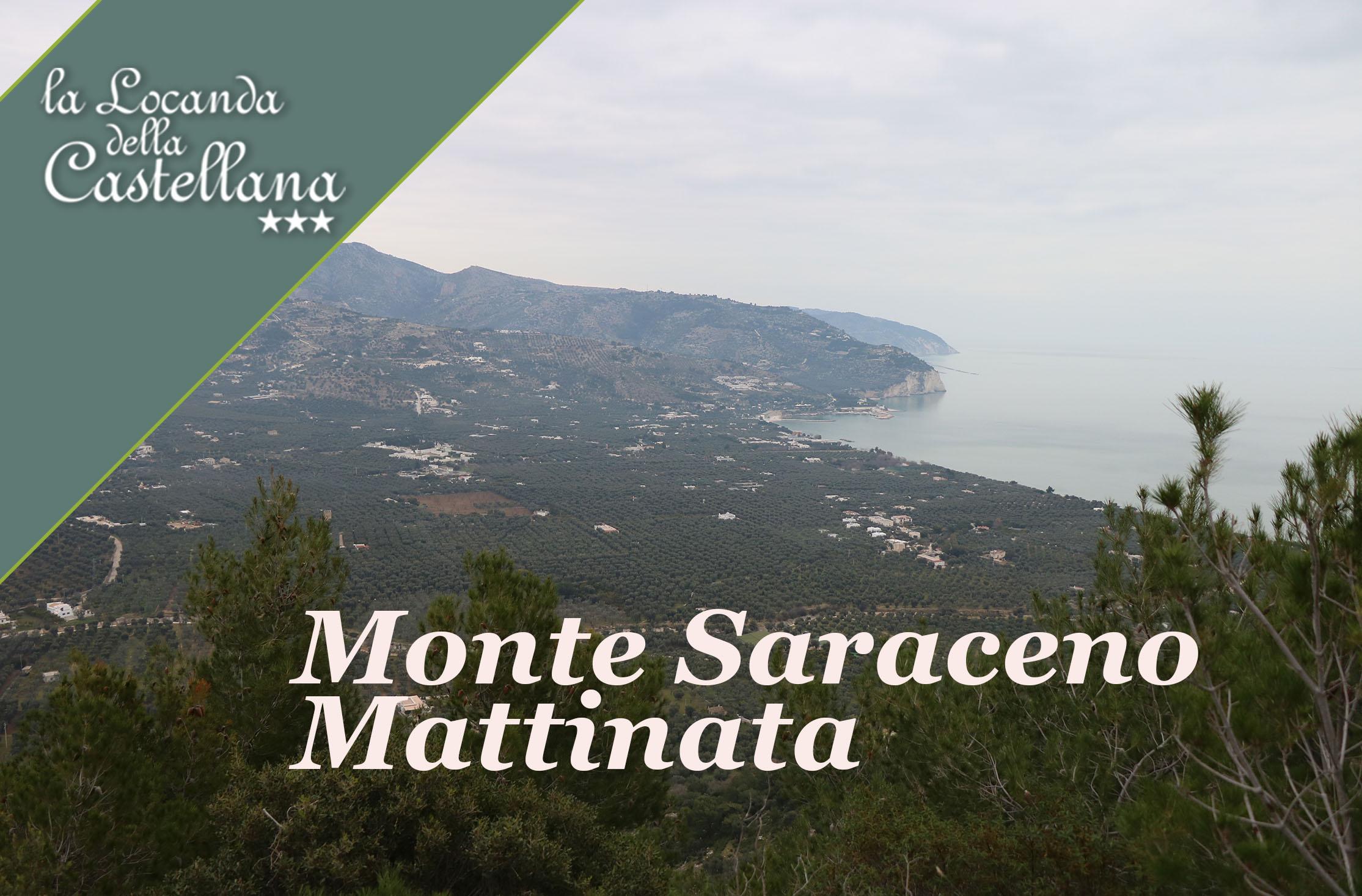 Parco Nazionale del Gargano- monte Saraceno Mattinata